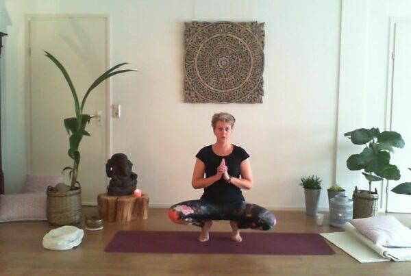 Discipline Yoga Noordwijk, Noordwijkerhout, Katwijk