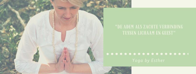 Ademtherapie Noordwijk, Adem & Meditatie